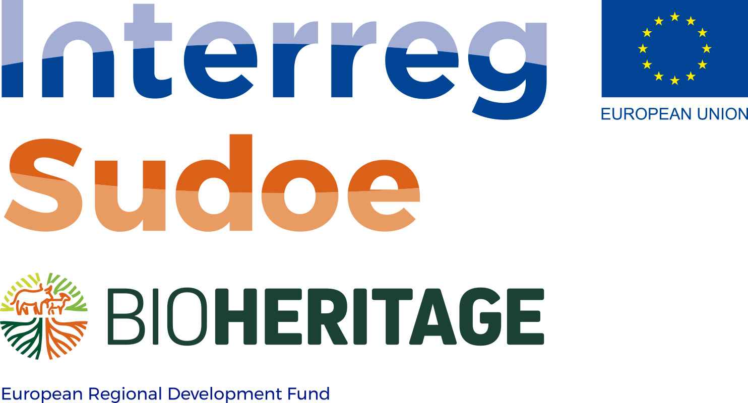 01officiel_bioheritage-logo-sudoe-vertical