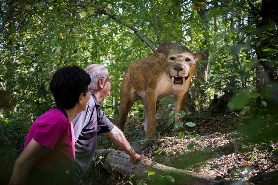 Xploria - Un animal des temps anciens - Photo © Xploria